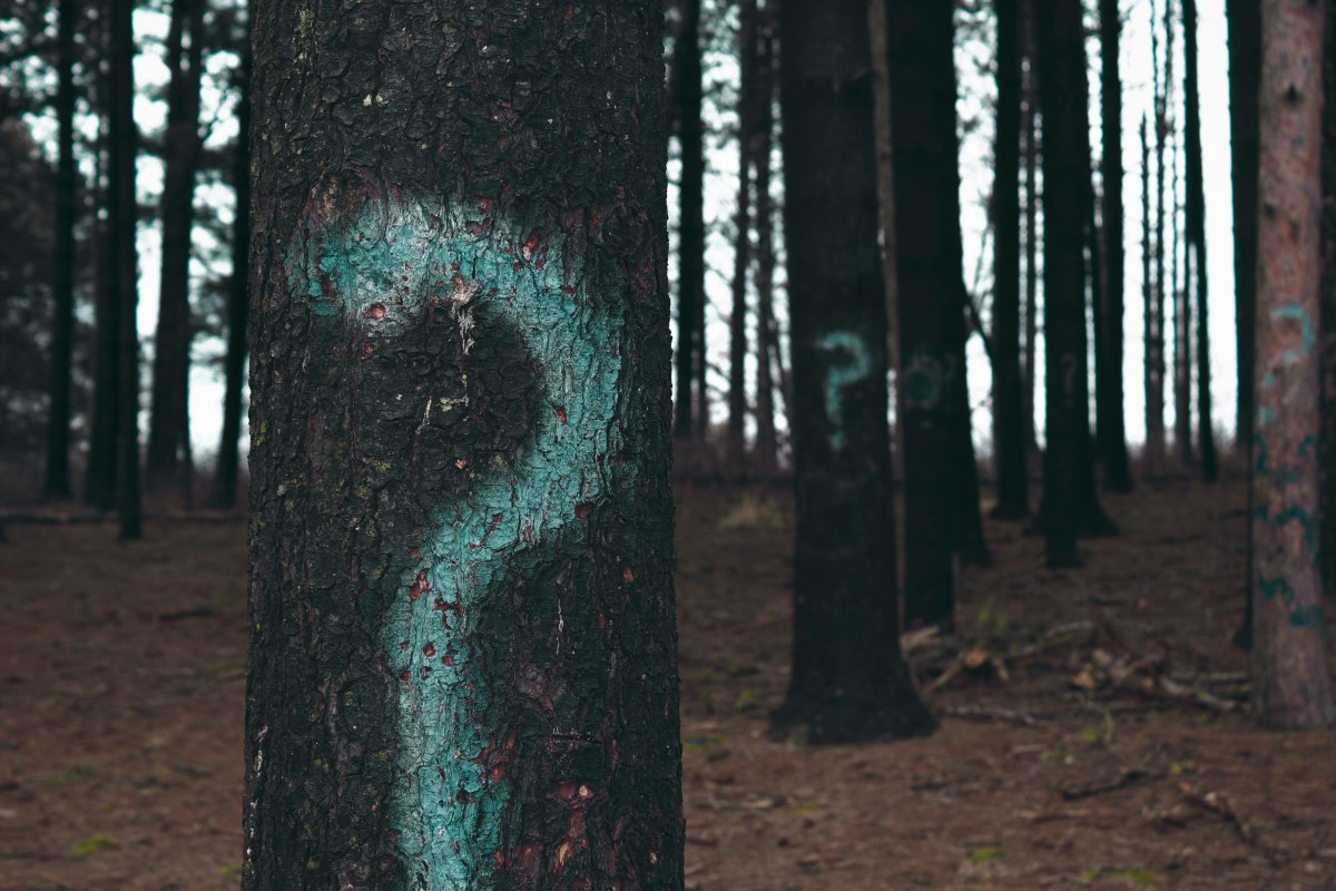 Tre spørsmål du kan stille deg om ditt selskapsmerkevare